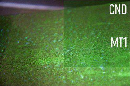 Cofrend – Magnétoscopie niveau 1